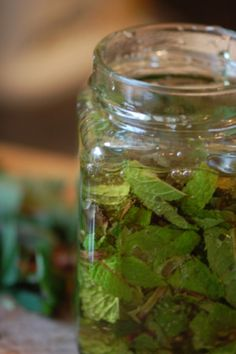 Mint infused honey