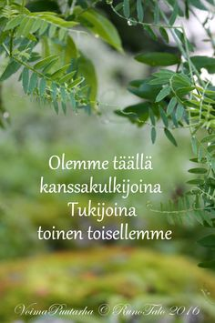TÄYDELLINEN   viikko 32 - 2016           Täydellinen sellaisenaan    on aina ihminen    joka on täydesti se    mikä on syntyjään    ... Finnish Words, Affirmation Cards, Mind Power, Spiritual Path, Peace Of Mind, Wise Words, Affirmations, Qoutes, Motivational Quotes