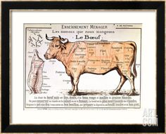 Beef: Diagram Depicting the Different Cuts of Meat Framed Giclee Print at Art.co.uk