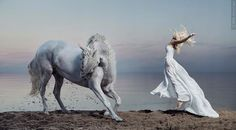 A dance between the woman and the horse. So gorgeous. Takes my breath away.