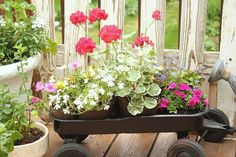 Vintage Children's Wagon With Flowers