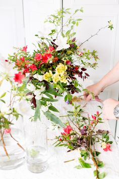 Cut flowers from other plants or arrangements