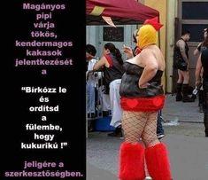 MAGÁNYOS PIPI VÁRJA KENDERMAGOS KAKASOK JELENTKEZÉSÉT - (Teljes méretért, szövegért katt a képre!) - Pistike viccújság Jokes, Lol, Funny, Cute, Random, Husky Jokes, Kawaii, Animal Jokes, Funny Jokes