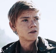 And He Really Liked Newt