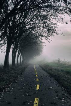 Foggy Road | Christian Hansen