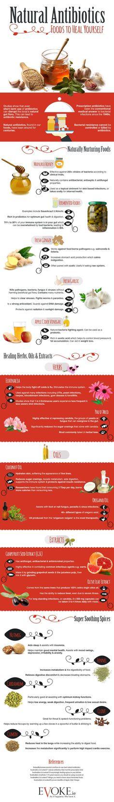 Natural Antibiotics: Foods to Heal Yourself – Infographic
