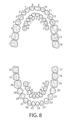 Dental Tooth Numbering Child  Dental Assisting