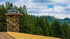 Couple turns a 40-foot-tall fire lookout into a spectacular off-grid home. Seriously, what I'd give to live in a fire lookout . . .