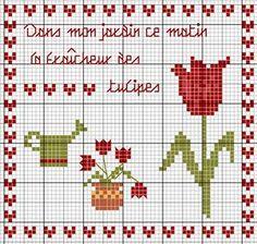 Dans mon jardin ce matin la fraîcheur des tulipes (In my garden this morning, fresh tulips) - Les chroniques de Frimousse