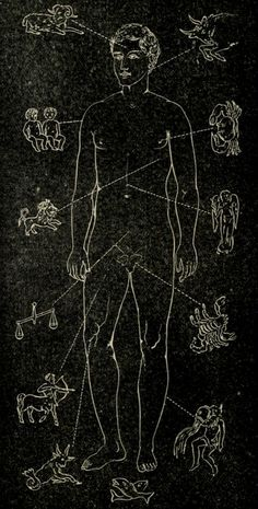 The astrology of the body. Solar biology. 1921