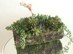 Succulent Arrangement Artificial Silk by LoveJoySucculents on Etsy