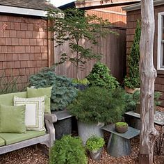 Mixed Greens are always in...  Use textural leaves for a more modern look. An assortment of plants in shades of green anchors this backyard corner and adds depth in the small space.
