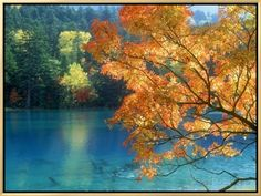 Lake Onneto Framed Canvas Print at AllPosters.com