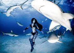 Смертельные танцы с тигровыми акулами