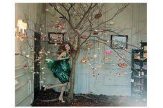 tim walker lily cole -