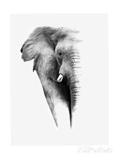 artistic BW photos - Cerca con Google