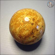 minerale - sfera - Corallo fossile - Madagascar - 56 mm