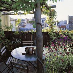 Terrasse faite par le paysagiste Hugues Peuvergne avec table ronde abritée par une pergola et entourée de lavandes, d'herbes aromatiques, de phillyrea