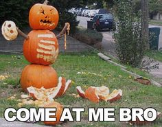 Come At Me Bro Funny Meme Funny Quotes Pumpkin Halloween Pumpkins Halloween Pictures Happy Halloween Halloween Images Halloween Ideas Halloween Humor Funny