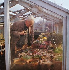 "J.R.R. Tolkien in his greenhouse.    ""I like to imagine that from such humble beginnings came the Old Forest, Mirkwood, Fangorn, Lothlorien, and—first and foremost—Sam Gamgee's scruffy talent with a spade."" —MN at the New York Botanical Garden blog"