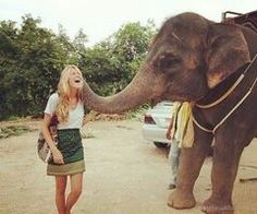 Kissed by an Elephant, ✔️Check...in Thailand