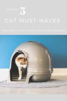 29 Pet Friendly Design Ideas Pets Pet Friendly Decorating Basics