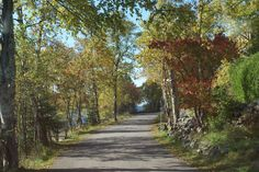 The Avenue at Silver Islet below Sleeping Giant Provincial Park.
