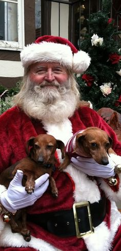 Santa has doxies