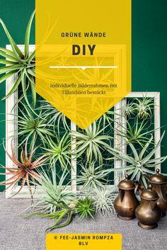 Für mehr Grün an den Wänden: DIY Wanddeko mit Tillandsien #diy #wanddeko #bilderrahmen #tillandsien #urbangardening I http://www.wayfair.de/tipps-und-ideen/DIY-Wanddeko-mit-Sukkulenten-E11121