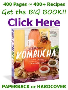 """Get The Big Book of Kombucha from KKamp, """"The one-stop guide for all things Kombucha!"""""""