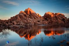 A Weekend in Joshua Tree National Park | pamphotography