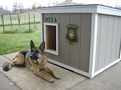 dog house plans... love that it's simple. I think I could build a box.