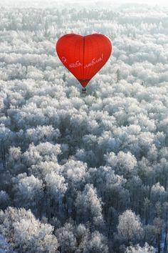 """earthyday: """" Я тебя люблю! / I love you!  by Alexey Sizov """""""