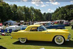 ford thunderbird 1950