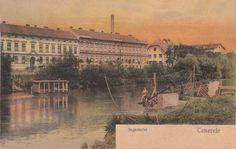 Timisoara - Bega - 1905