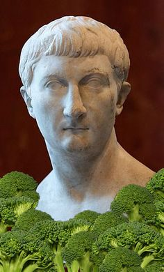 Roman broccoli Boiled Cabbage, Raw Cabbage, Cabbage Leaves, Ruta Graveolens, Italian Drinks, Small Yellow Flowers, Roman Love, Pliny The Elder