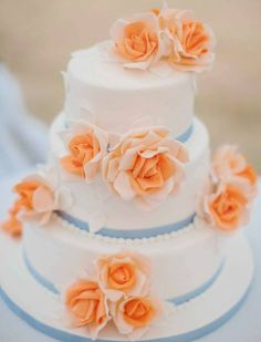 Wedding Cakes We Love  Love the peach roses and the blue running through this cake!