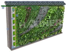 Green Wall Systems   Green wall , Hainer wall greening system, wall greening techniques ...