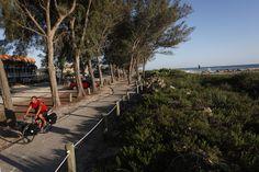 Visit Florida ~ Bike Trails run throughout the Island  Facebook: Anna Maria Island Beach Life www.annamariaislandhomerental.com Twitter: AMIHomerental