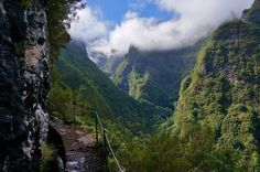 Looking across the emerald valley ... the location of this was not noted, but it is a beautiful place! (I think this is Madeira Island, Portugal, but not sure)