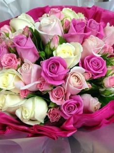 Raindrops and Roses Beautiful Rose Flowers, Love Rose, All Flowers, Exotic Flowers, My Flower, Beautiful Gardens, Wedding Flowers, Raindrops And Roses, Hearts And Roses