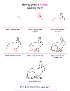how-to-draw-a-rabbit-step-by-step.png 600×776 pixels