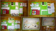 lapbook PRAVĚK Education, Frame, Books, Homeschooling, Activities, Trapper Keeper, Historia, Picture Frame, Libros