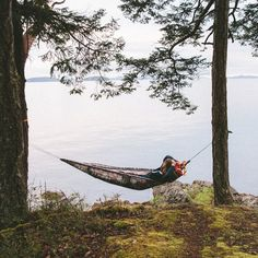 Sometimes all you need is a couple of good trees and a Honeybaked Hammock. Just ask @marksollors. Get on his level using the link in our bio. Field Wallpaper, Lakeside Cabin, Lake Side, Lake Cabins, Cabins In The Woods, Instagram Shop, Great Pictures, Outdoor Fun, Just Go