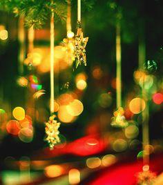 Christmas Tree, Zurich, Switzerland