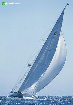 #barcodevela #barco #vela #mar #agua #olas #bonito #awesome #deportes #aquaticos