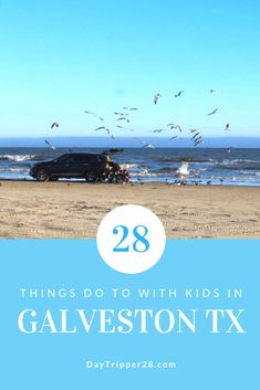 These 28 fun things to do in Galveston will have you wondering why you didn't go there sooner. The kids will love the beach and the parents will love the relaxing time. Road Trip Essentials, Road Trip Hacks, Road Trips, Cruise Vacation, Disney Vacations, Family Vacations, Kids Things To Do, Stuff To Do, Fun Things