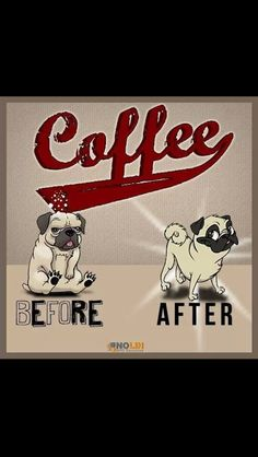 Coffee Humor | Dogs Before and After Coffee | From Funny Technology - Community - Google+ via eric chen