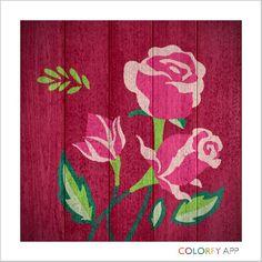 #colorfy