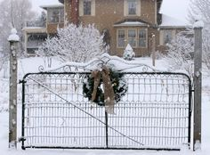 Hello everyone, I hope you all had a lovely Christmas. I was so happy to have some snow arrive a couple of days before Christmas as it. Christmas Farm, Outdoor Christmas, White Christmas, Farm Gate, Farm Fence, Driveway Gate, Fence Gate, Love Garden, Home And Garden